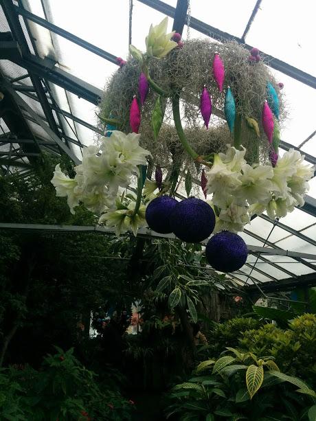 Winter inspiration at Allan Gardens Conservatory, Toronto, ON